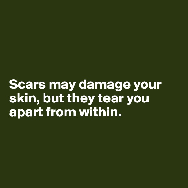 Scars may damage your skin, but they tear you apart from within.