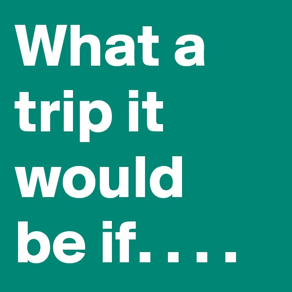 What a trip it would be if. . . .
