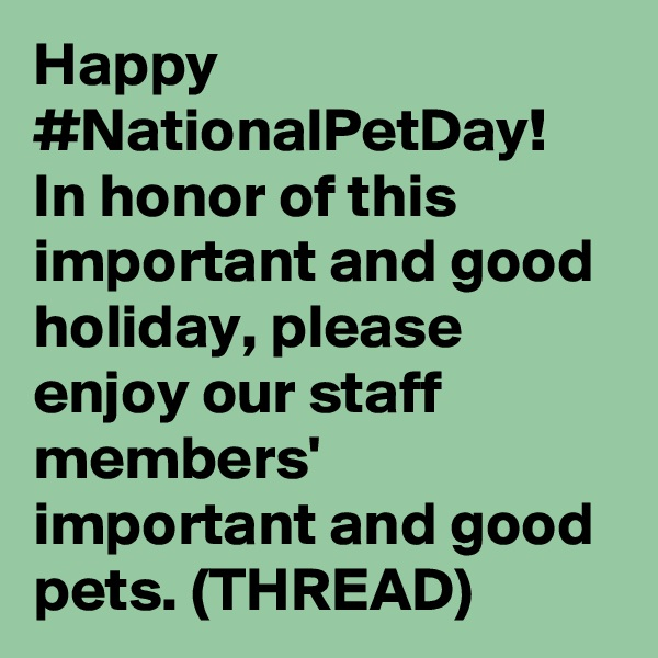 Happy #NationalPetDay! In honor of this important and good holiday, please enjoy our staff members' important and good pets. (THREAD)