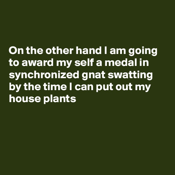 On the other hand I am going to award my self a medal in synchronized gnat swatting by the time I can put out my house plants