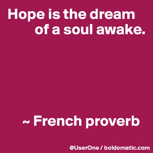 Hope is the dream          of a soul awake.           ~ French proverb