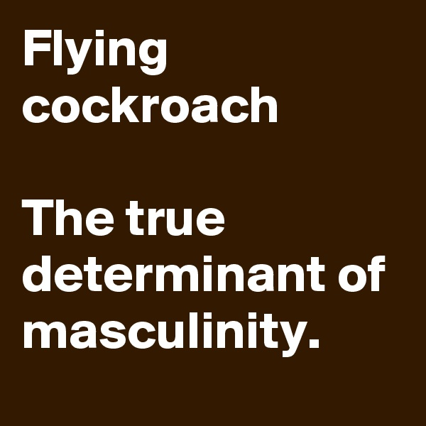 Flying cockroach  The true determinant of masculinity.