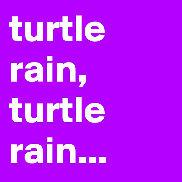 turtle rain, turtle rain...