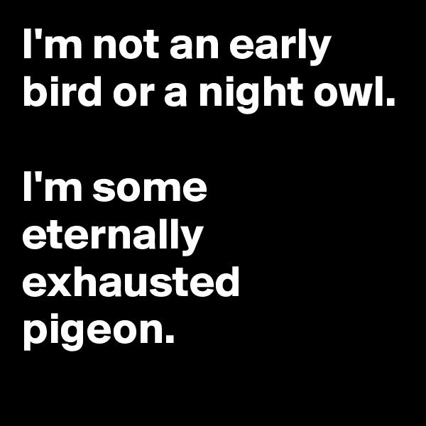 I'm not an early bird or a night owl.  I'm some eternally exhausted pigeon.