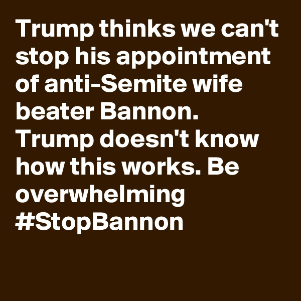Trump thinks we can't stop his appointment of anti-Semite wife beater Bannon. Trump doesn't know how this works. Be overwhelming #StopBannon
