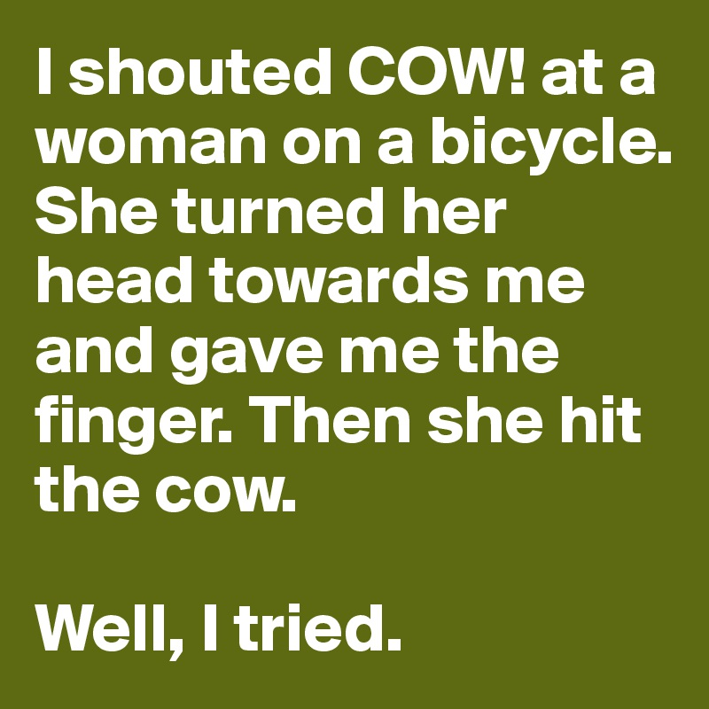 I shouted COW! at a woman on a bicycle.  She turned her head towards me and gave me the finger. Then she hit the cow.   Well, I tried.