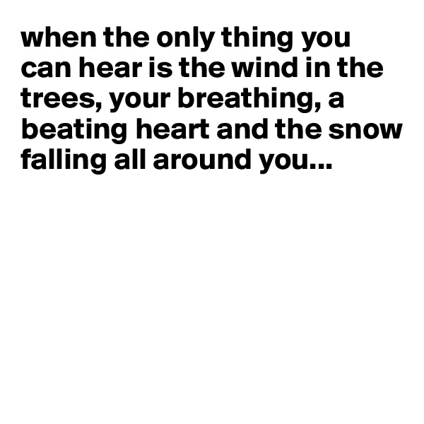 when the only thing you can hear is the wind in the trees, your breathing, a beating heart and the snow falling all around you...