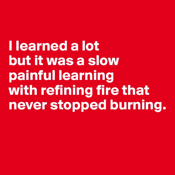 I learned a lot  but it was a slow painful learning  with refining fire that never stopped burning.