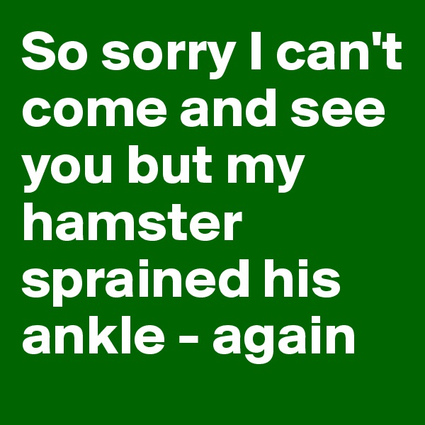 So sorry I can't come and see you but my hamster sprained his ankle - again