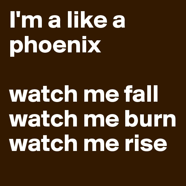 I'm a like a phoenix  watch me fall watch me burn watch me rise