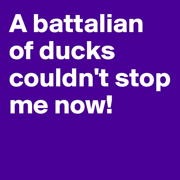 A battalian of ducks couldn't stop me now!