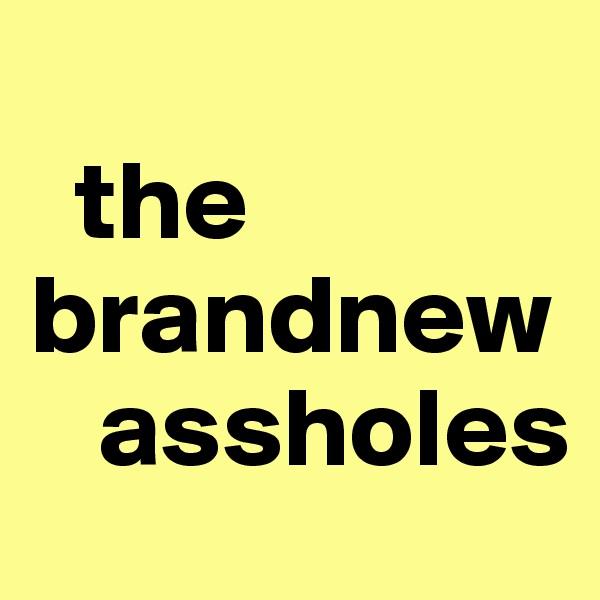 the brandnew       assholes