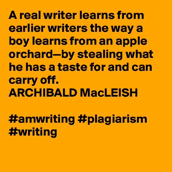 A real writer learns from earlier writers the way a boy learns from an apple orchard—by stealing what he has a taste for and can carry off. ARCHIBALD MacLEISH  #amwriting #plagiarism #writing