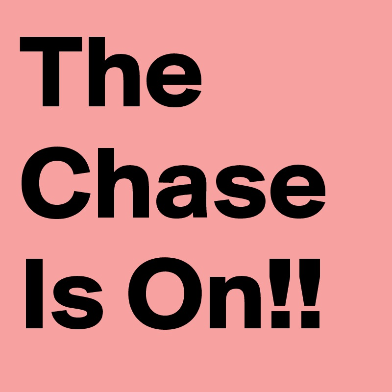 The Chase Is On!!