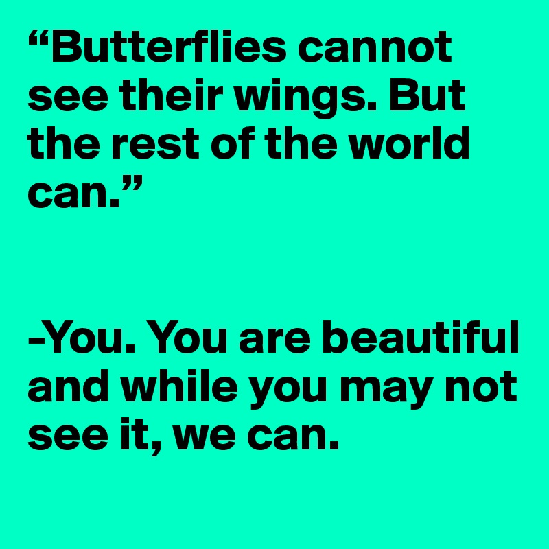 """""""Butterflies cannot see their wings. But the rest of the world can.""""   -You. You are beautiful and while you may not see it, we can."""
