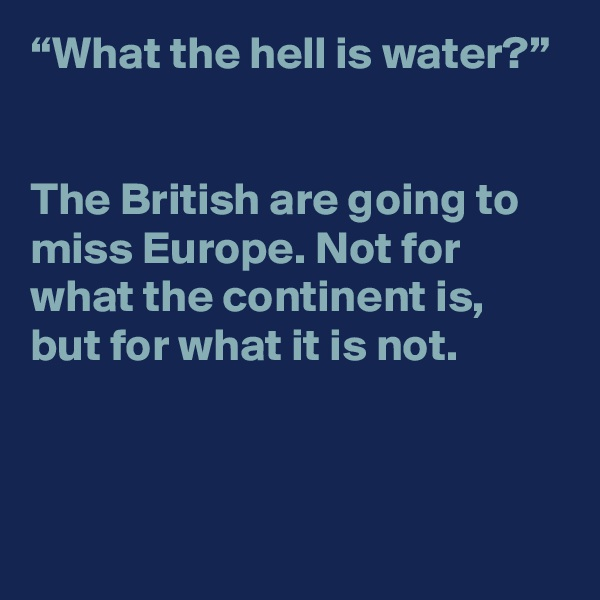 """""""What the hell is water?""""   The British are going to miss Europe. Not for what the continent is, but for what it is not."""