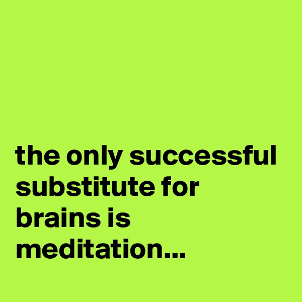 the only successful substitute for brains is meditation...