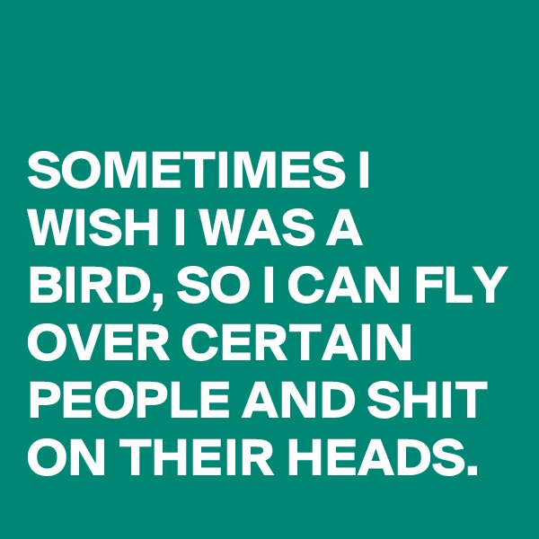SOMETIMES I WISH I WAS A BIRD, SO I CAN FLY OVER CERTAIN PEOPLE AND SHIT ON THEIR HEADS.