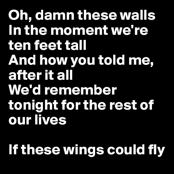 Oh, damn these walls In the moment we're ten feet tall And how you told me, after it all We'd remember tonight for the rest of our lives  If these wings could fly