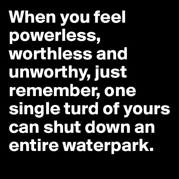 When you feel powerless, worthless and unworthy, just remember, one single turd of yours can shut down an entire waterpark.