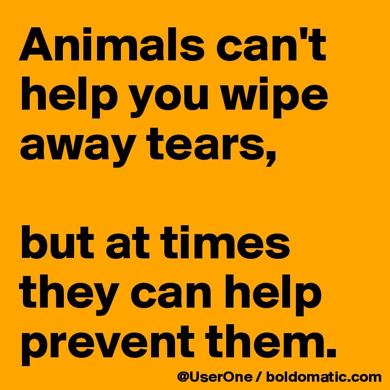 Animals can't help you wipe away tears,  but at times they can help prevent them.