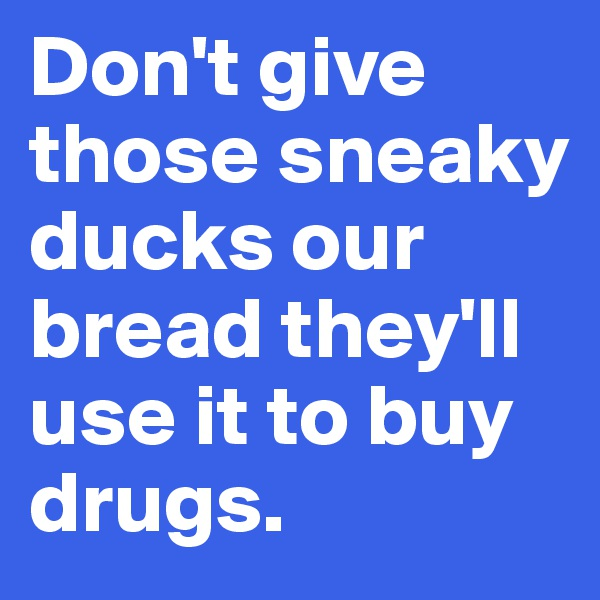 Don't give those sneaky ducks our bread they'll use it to buy drugs.