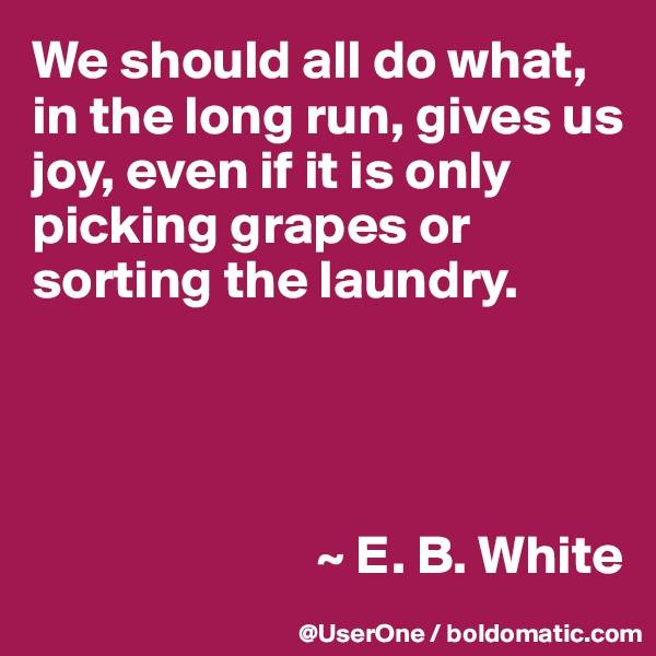 We should all do what, in the long run, gives us joy, even if it is only picking grapes or sorting the laundry.                               ~ E. B. White
