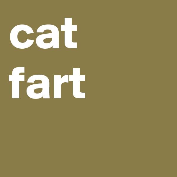 cat fart