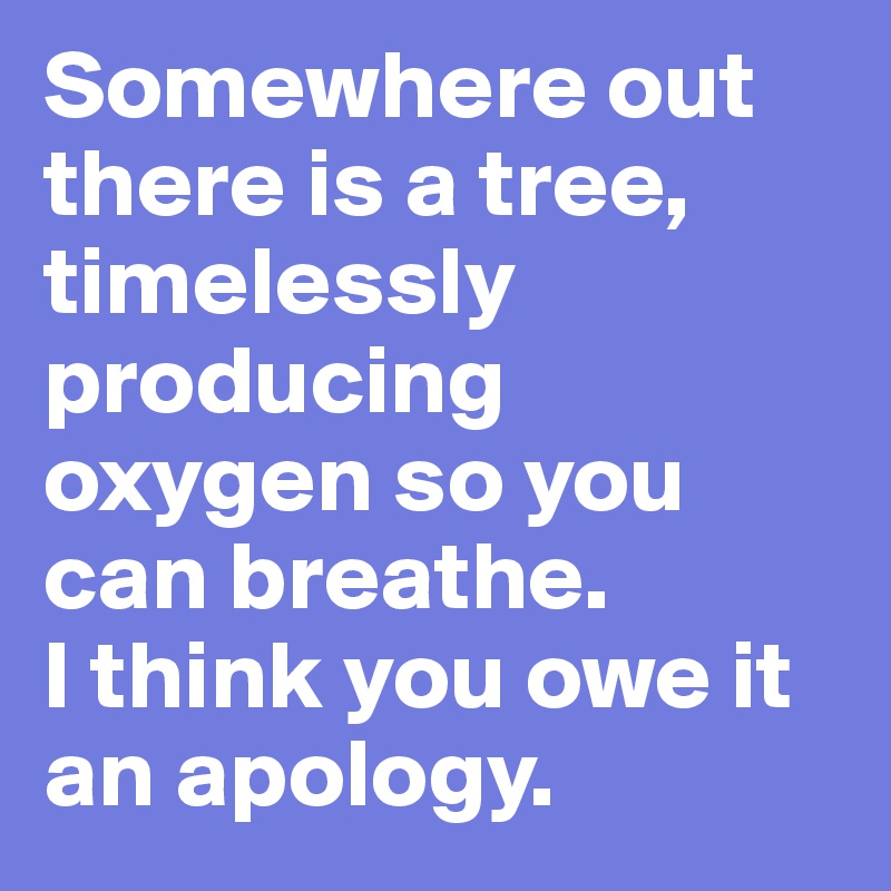 Somewhere out there is a tree, timelessly producing oxygen so you can breathe. I think you owe it an apology.