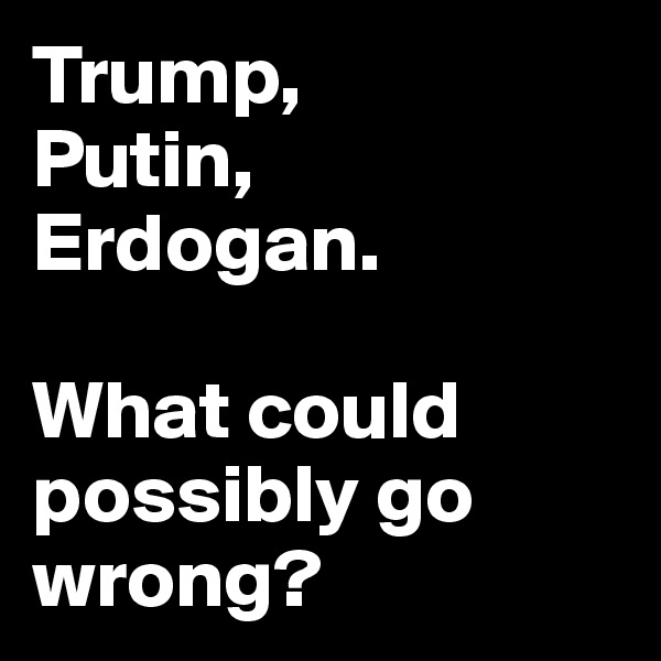 Trump,  Putin, Erdogan.  What could possibly go wrong?