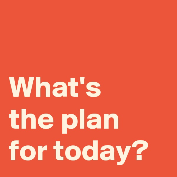 What's  the plan for today?