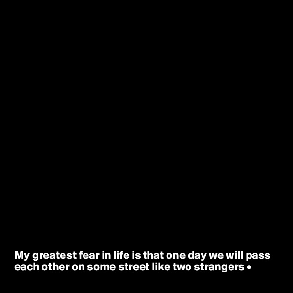 My greatest fear in life is that one day we will pass each other on some street like two strangers •