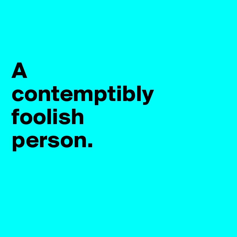 A  contemptibly foolish  person.