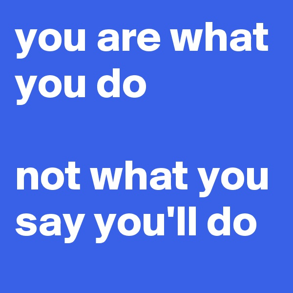 you are what you do  not what you say you'll do