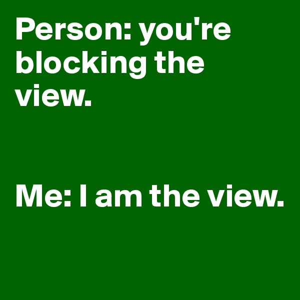 Person: you're blocking the view.   Me: I am the view.