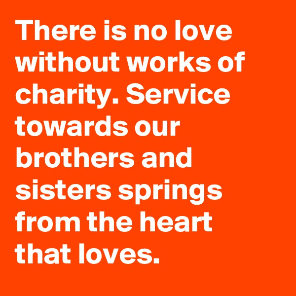 There is no love without works of charity. Service towards our brothers and sisters springs from the heart that loves.
