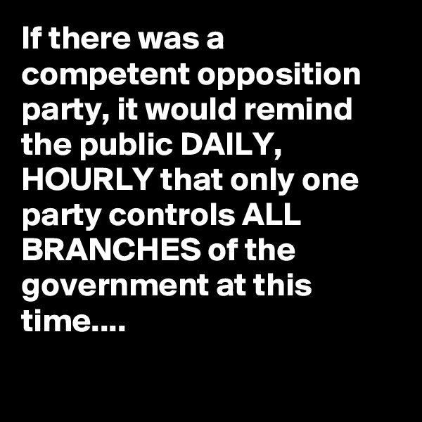 If there was a competent opposition party, it would remind the public DAILY, HOURLY that only one party controls ALL BRANCHES of the government at this time....