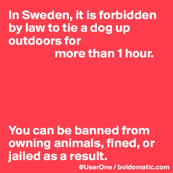 In Sweden, it is forbidden by law to tie a dog up outdoors for                   more than 1 hour.      You can be banned from owning animals, fined, or jailed as a result.