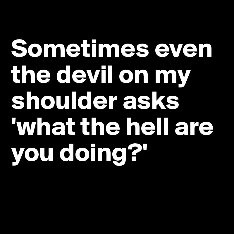 Sometimes even the devil on my shoulder asks 'what the hell are you doing?'