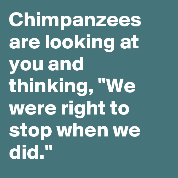 "Chimpanzees are looking at you and thinking, ""We were right to stop when we did."""