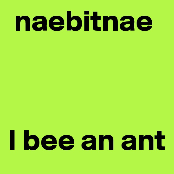 naebitnae     I bee an ant