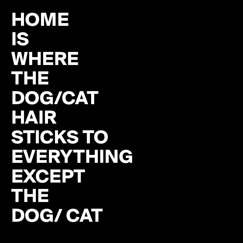 HOME IS WHERE THE DOG/CAT HAIR  STICKS TO EVERYTHING EXCEPT THE  DOG/ CAT