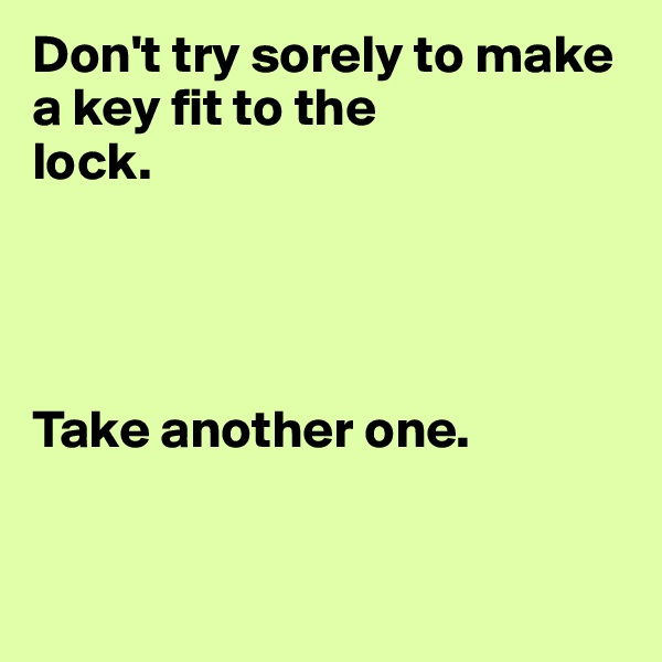 Don't try sorely to make a key fit to the  lock.     Take another one.