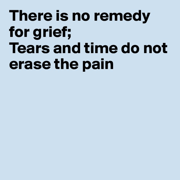 There is no remedy for grief; Tears and time do not erase the pain