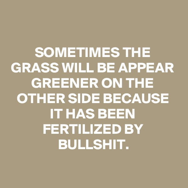 SOMETIMES THE GRASS WILL BE APPEAR GREENER ON THE OTHER SIDE BECAUSE IT HAS BEEN FERTILIZED BY BULLSHIT.