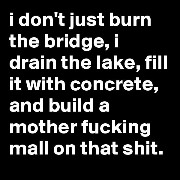 i don't just burn the bridge, i drain the lake, fill it with concrete, and build a mother fucking mall on that shit.