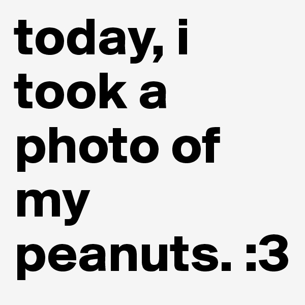 today, i took a photo of my peanuts. :3