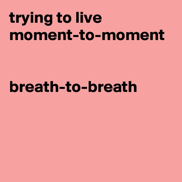 trying to live moment-to-moment   breath-to-breath