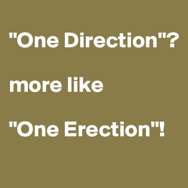 """""""One Direction""""?  more like   """"One Erection""""!"""
