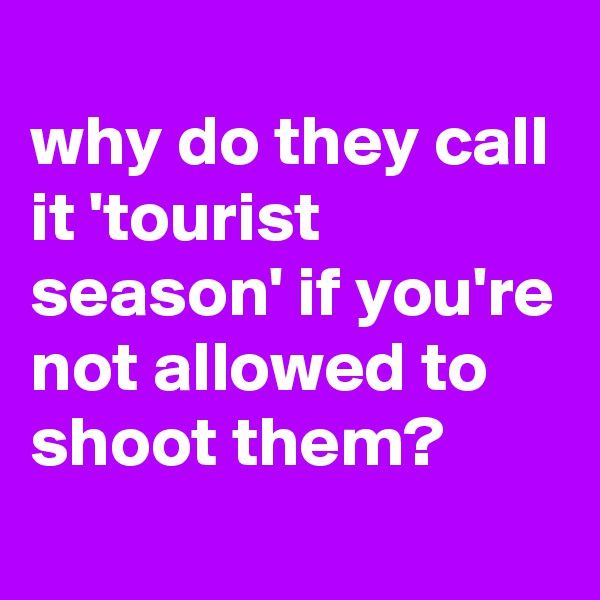 why do they call it 'tourist season' if you're not allowed to shoot them?